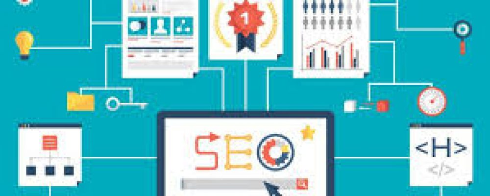 These Are Some Criteria for Professional SEO Service Providers