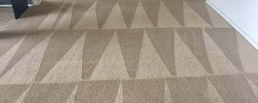 You Must Know How To Choose A Trustworthy Carpet Cleaning Company