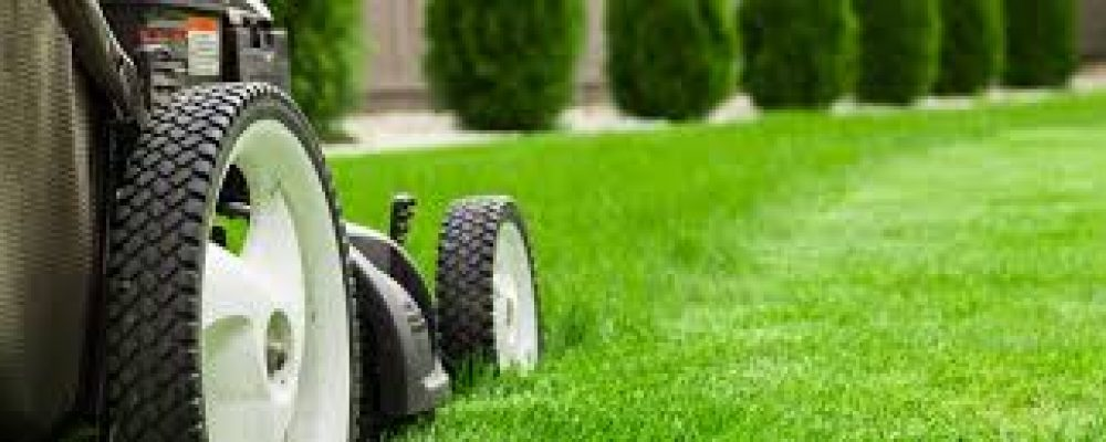The Importance Of Customizing A Grass Cutter