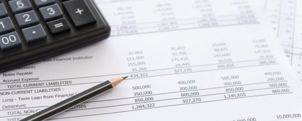 Scope of Public Accountant Services